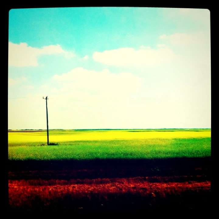 Back home in the prairies
