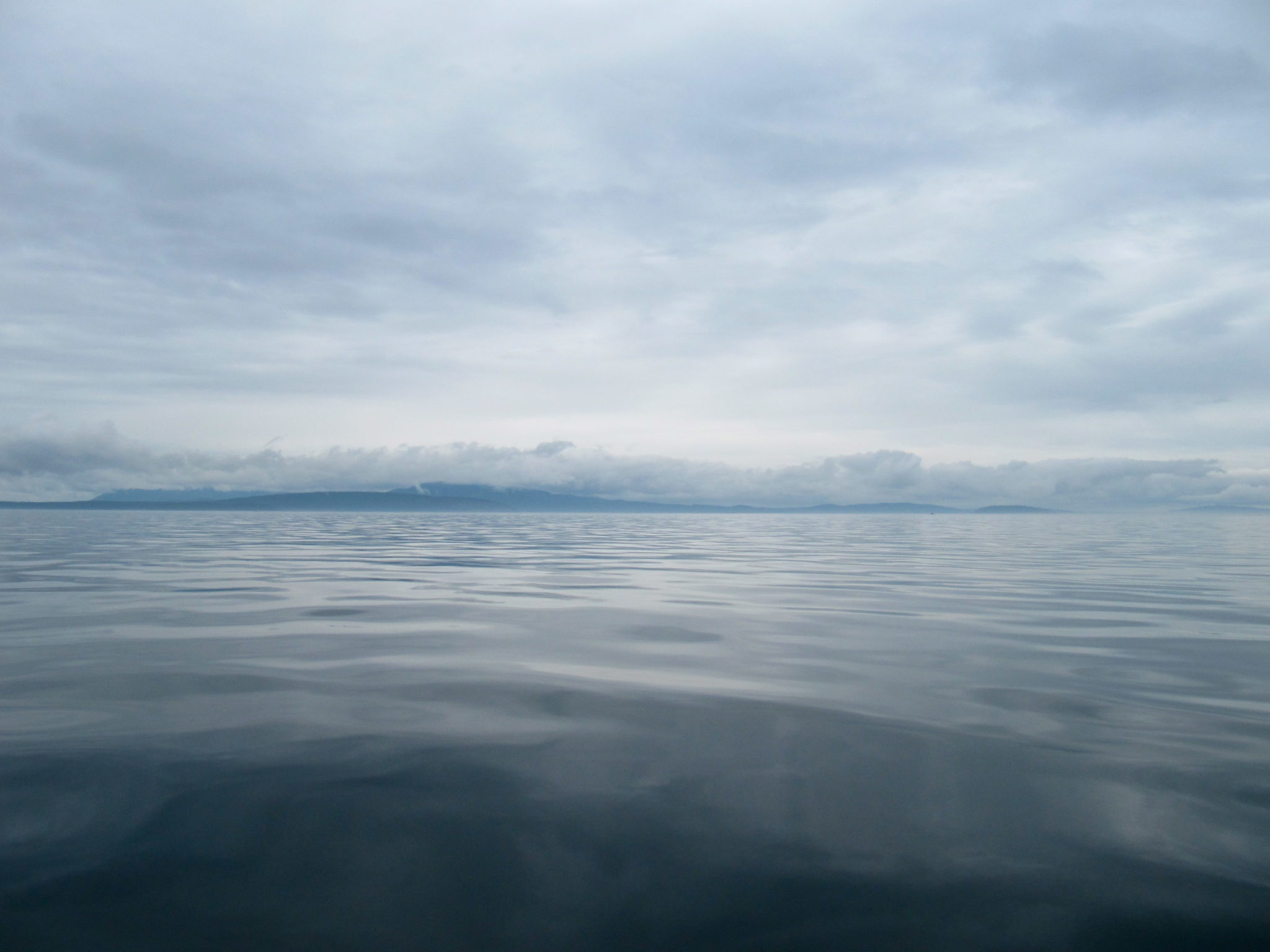 The eerily calm waters around the San Juan islands