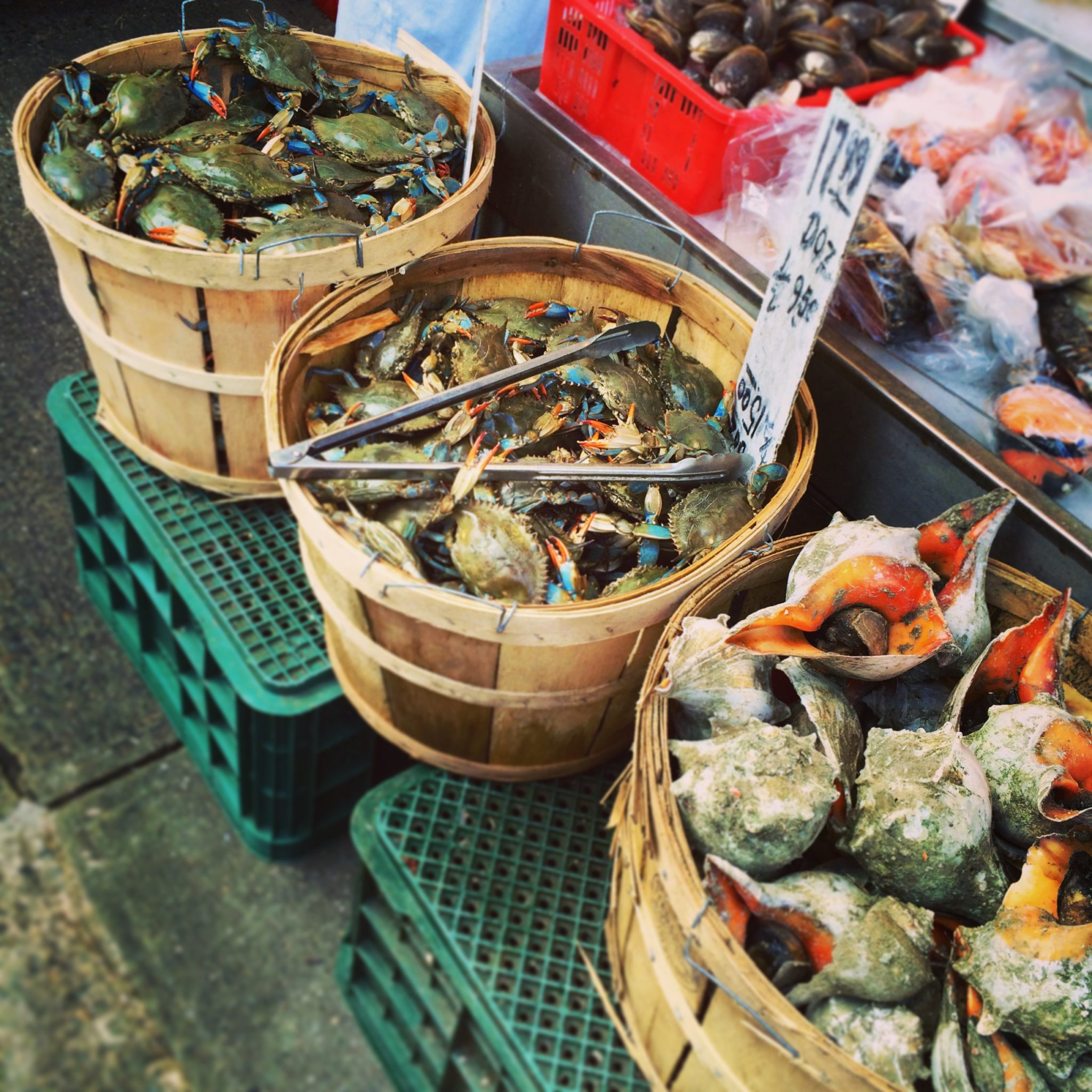 Fresh seafood in Chinatown.