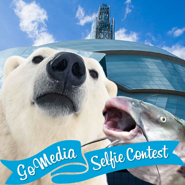 Polar bear and catfish at Canadian Museum for Human Rights. GoMedia 2014 Selfie Contest for Travel Manitoba.