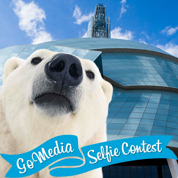 Polar bear at CMHR. GoMedia 2014 Selfie Contest for Travel Manitoba.