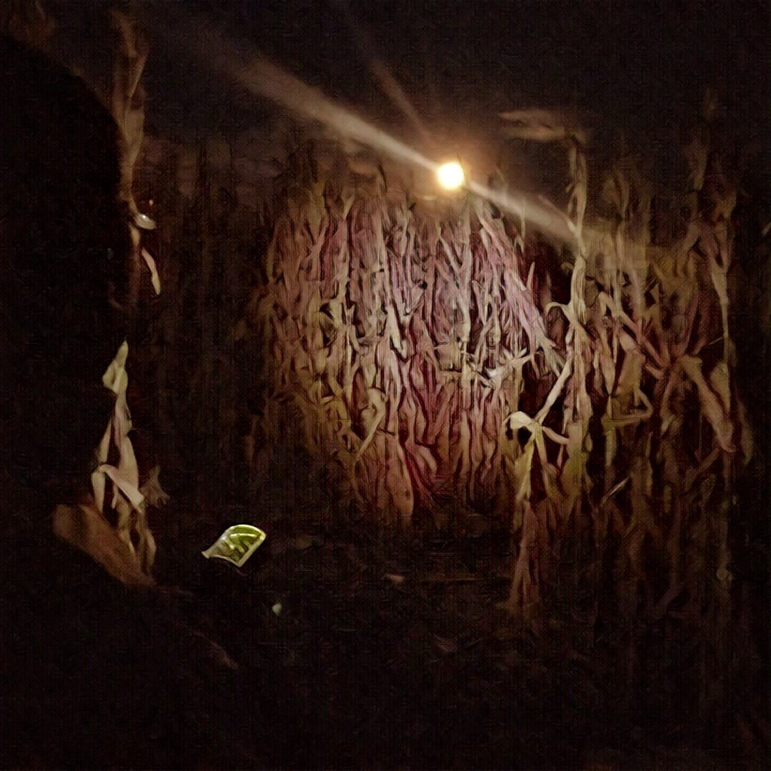A supermoon lights our way in the corn maze